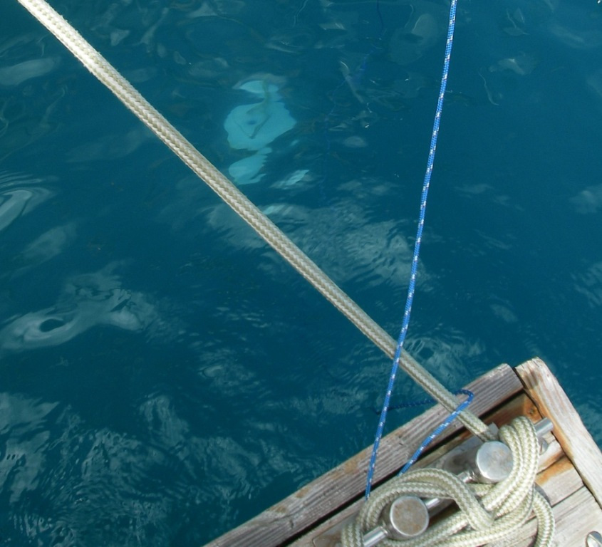 22. Joyful's Secchi disk submerged into Bora Bora's lagoon water next to Joyful's floating dock. The Secchi depth of 8 meters 20 centimeters was obtained. Scientists studying phytoplankton are interested in the readings.