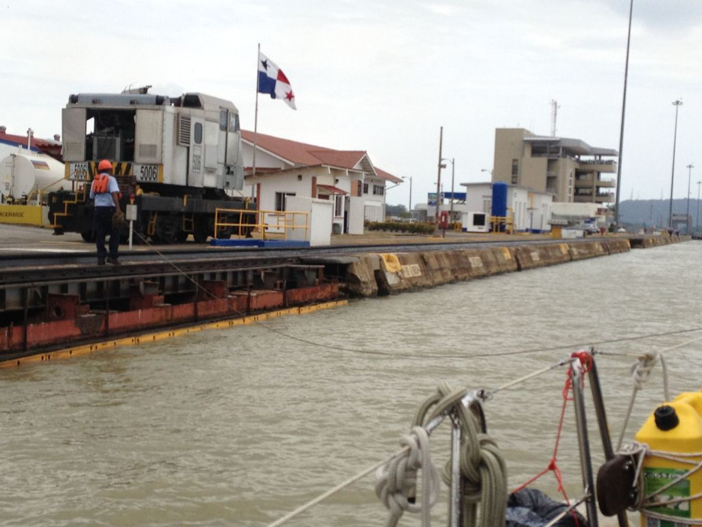 69. A land line handler walked Joyful by the lock doors toward her location for the lowering of the water level in the upper Miraflores Lock.