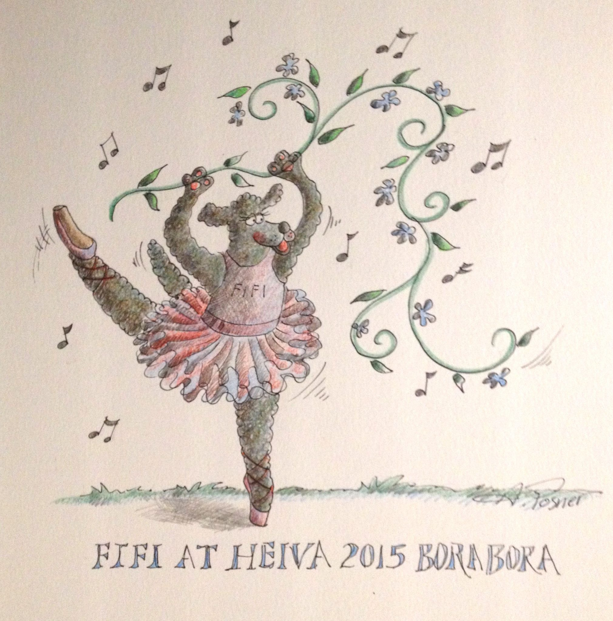 18. This is Anne's drawing of Fifi, Gerard's French Poodle at Heiva Bora Bora 2015.  Gerard kindly let Joyful use one of his mooring lines all month to keep her steady on Teiva's dock in the lagoon