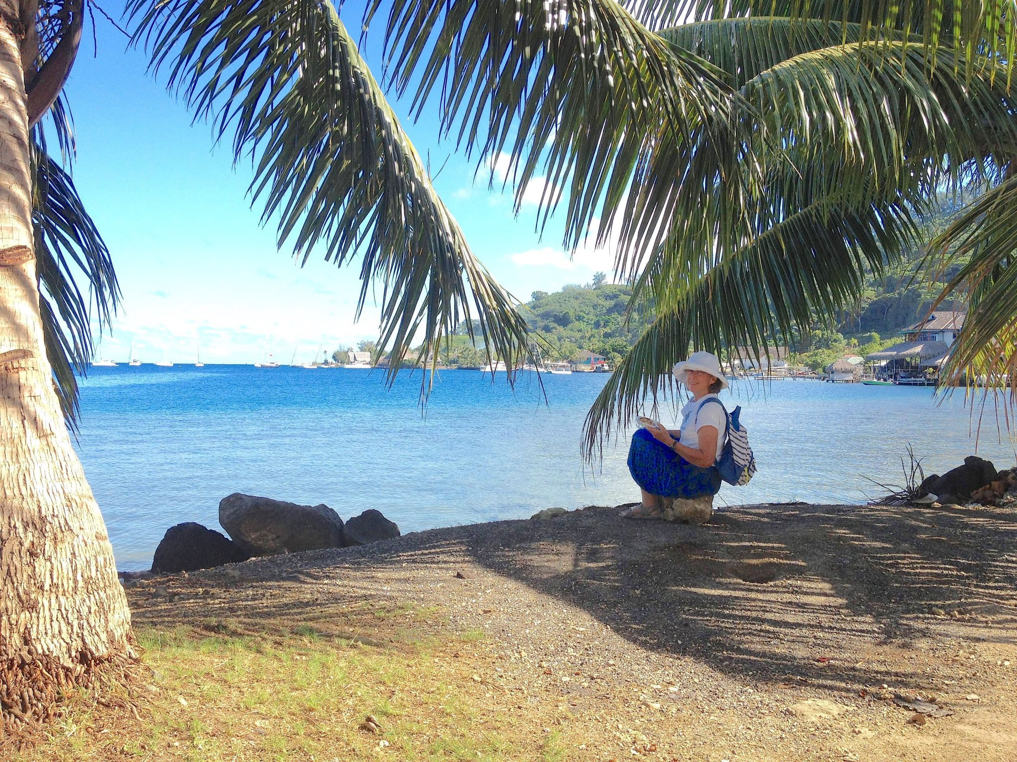 20. Anne and Jeff ate lunch under coconut trees in Bora Bora with Joyful in the distance.