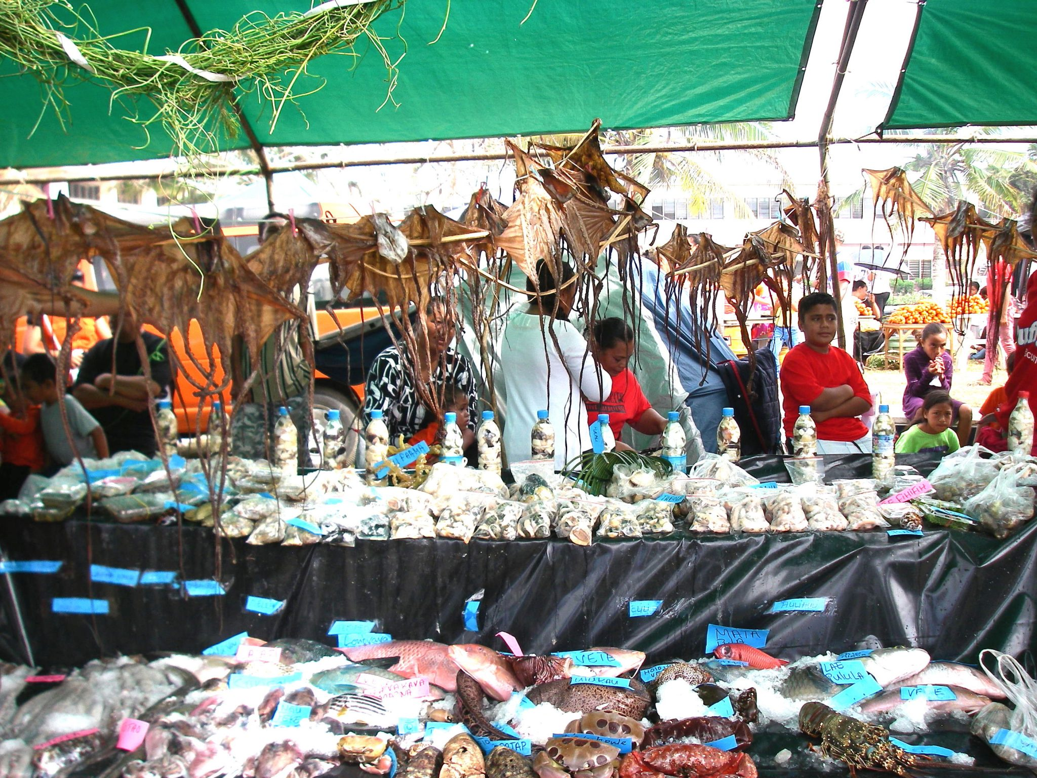 99. The variety of bounty from the sea presented by this family, as by others, was staggering! Sea weed, fish of all types, shell creatures, dried octopus, pickled sea creatures in bottles, and more were in countless booths at this fantastic show!