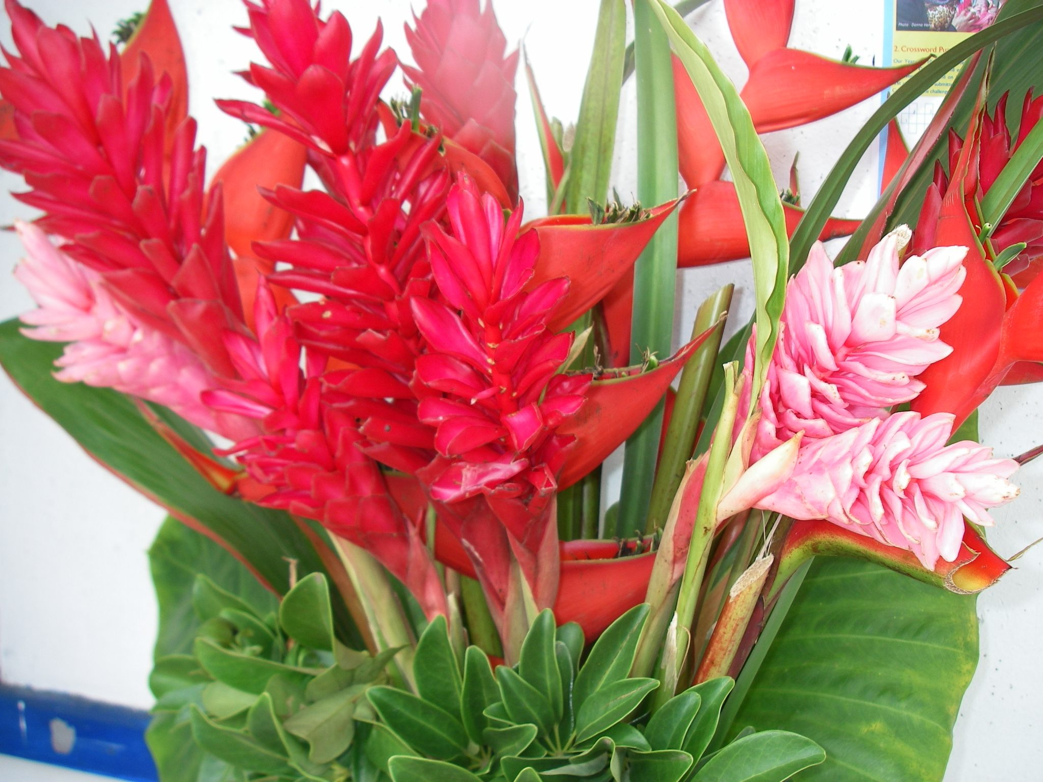 93-bright-fresh-flowers-from-vanuatu-were-displayed-by-the-alter-of-the-church