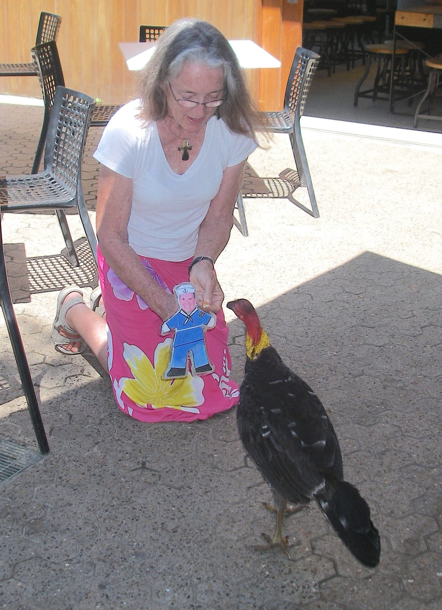 52.3. Birds - Flat Mr. Davis and Anne feed a wild turkey in the Sydney Toranga Zoo in November 2015