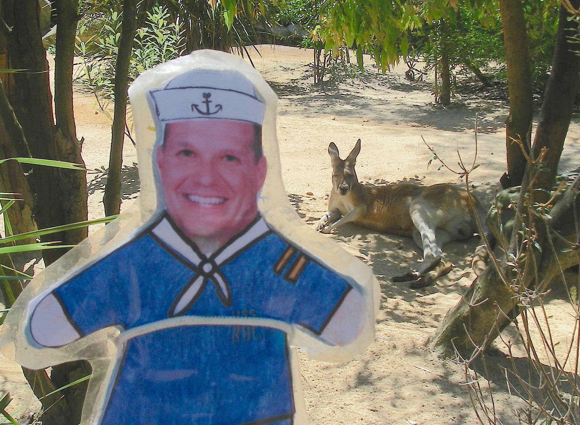 58.3.1. Flat Mr. Davis saw a kangaroo at the Taronga Zoo in Sydney in November 2015