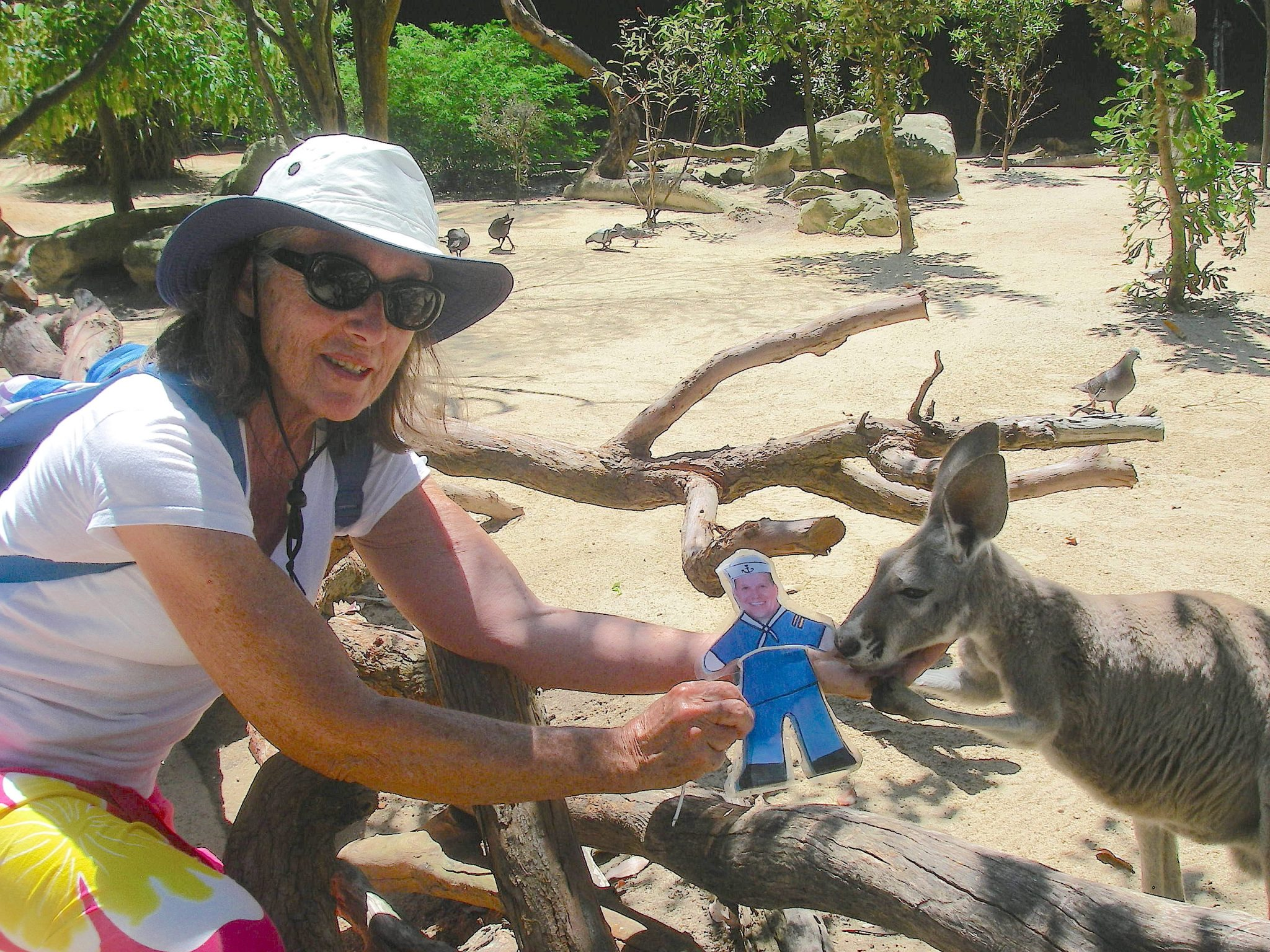 58.4. Flat Mr. Davis and Anne make friends with a wallaby in Sydney